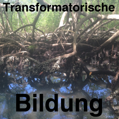 "Podcast ""Transformatorische Bildung"""